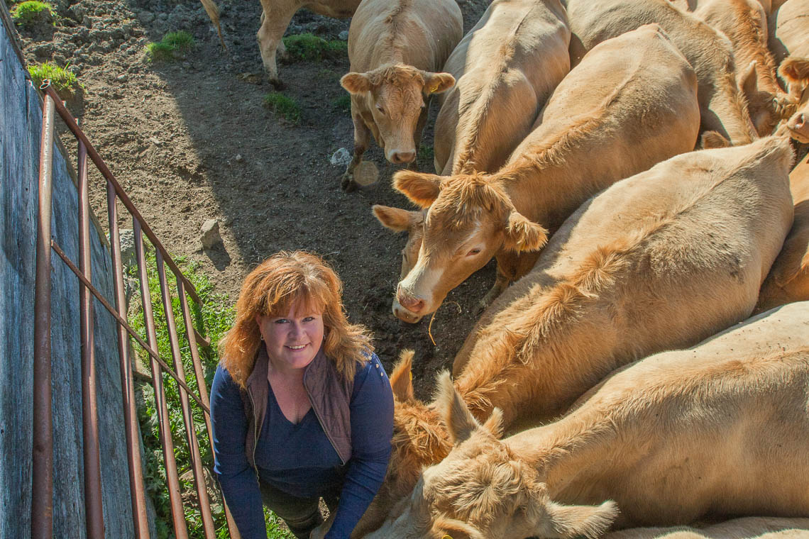 Julie Dawson standing with cows